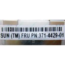 Серверная память SUN (FRU PN 371-4429-01) 4096Mb (4Gb) DDR3 ECC в Фрязино, память для сервера SUN FRU P/N 371-4429-01 (Фрязино)