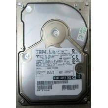 Жесткий диск 18.2Gb IBM Ultrastar DDYS-T18350 Ultra3 SCSI (Фрязино)